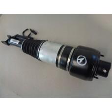 Амортизатор A2113206113